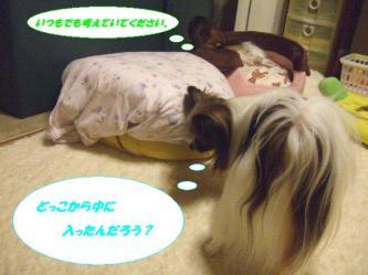 18-04_20090830141102.jpg