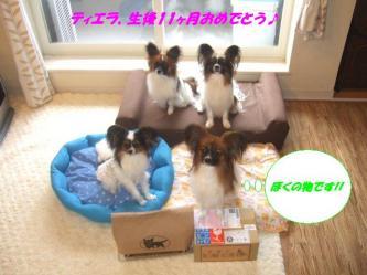 26-01_20090501202844.jpg