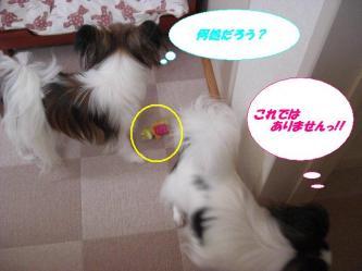 27-03_20090729175352.jpg