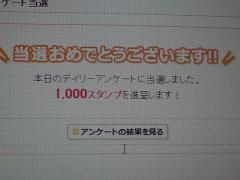 P1000308.jpg