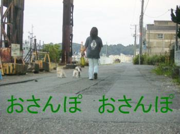 P8160108おさんぽ