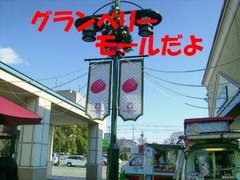 PC210086.jpg