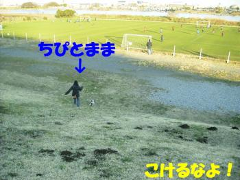 PC270146.jpg