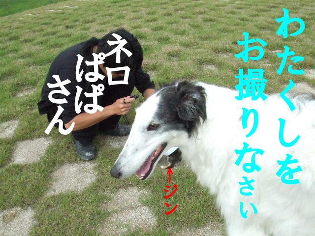 20060515002533.jpg
