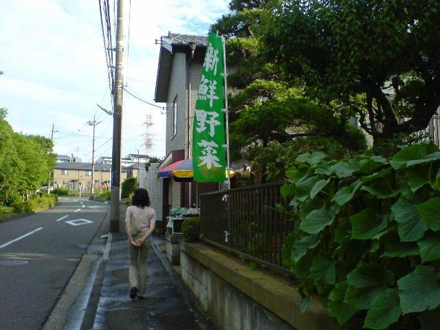 朝散歩-3