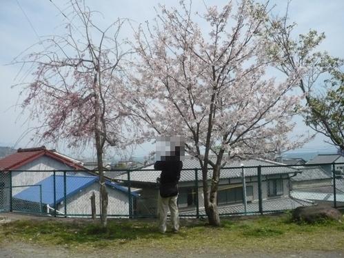 2008-04-05-05