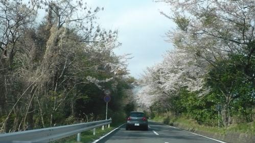 2008-04-06-5A
