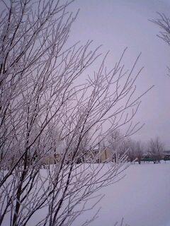 晴れの零下