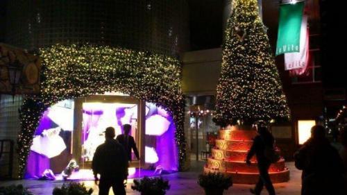 11-12-23 ラ・ヴィータ高知店クリスマスディスプレイ