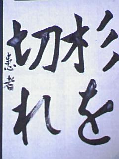 20080319190846