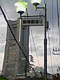 20080525185327