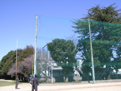 100331樹木調査2