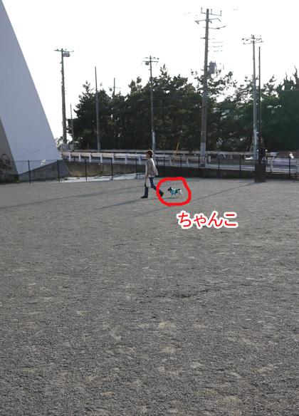 hitori_20100326115300.jpg