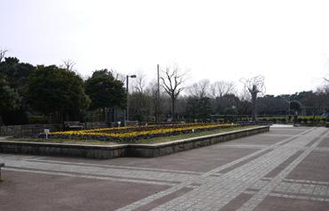 nagakubo_20100319190106.jpg