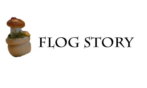 flog story