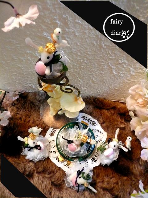 王冠ウサギと普通のウサギ(//^-^//)