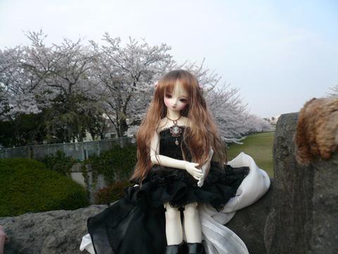 桜の精に見えるかな???