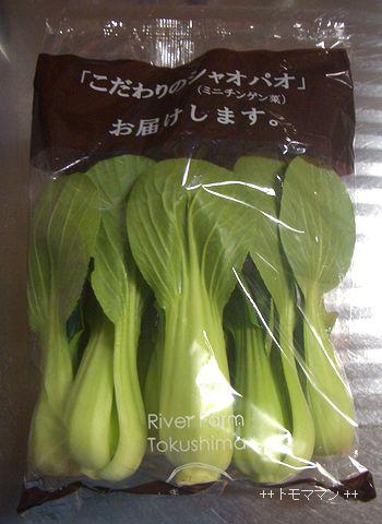 ミニチンゲン菜