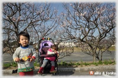 20120321_2.jpg