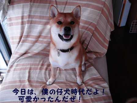 2008_08160017.jpg