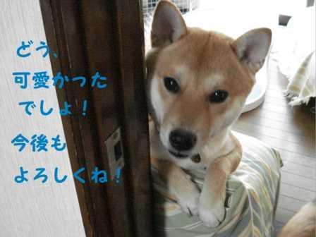 2008_08160036.jpg