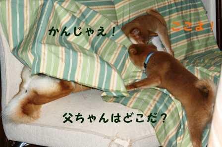 2008_08240015.jpg
