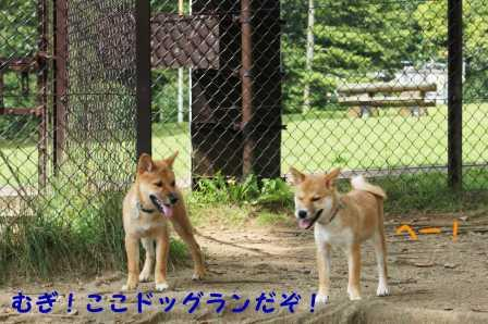 2008_09090018.jpg