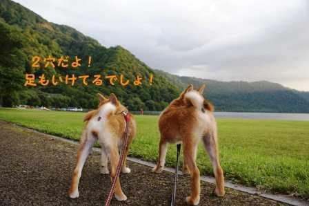 2008_09090122.jpg