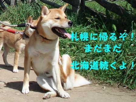 2008_09130070.jpg