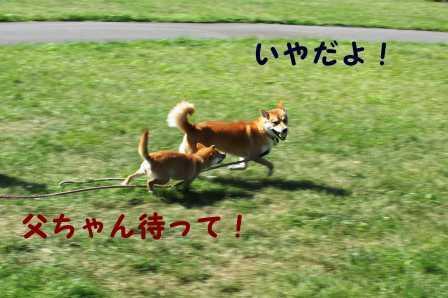 2008_09140154.jpg