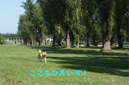 2008_09140258.jpg
