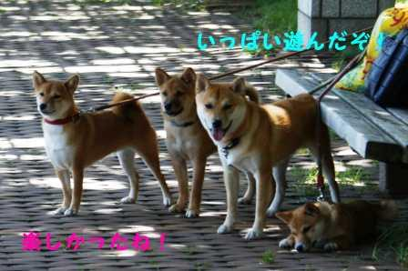 2008_09140293.jpg