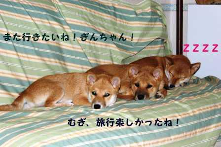 2008_09140347.jpg