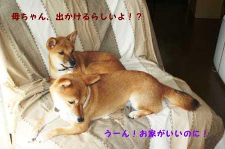 2008_09270064.jpg