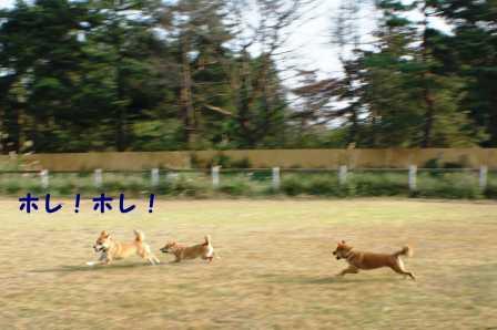 2008_10050141.jpg