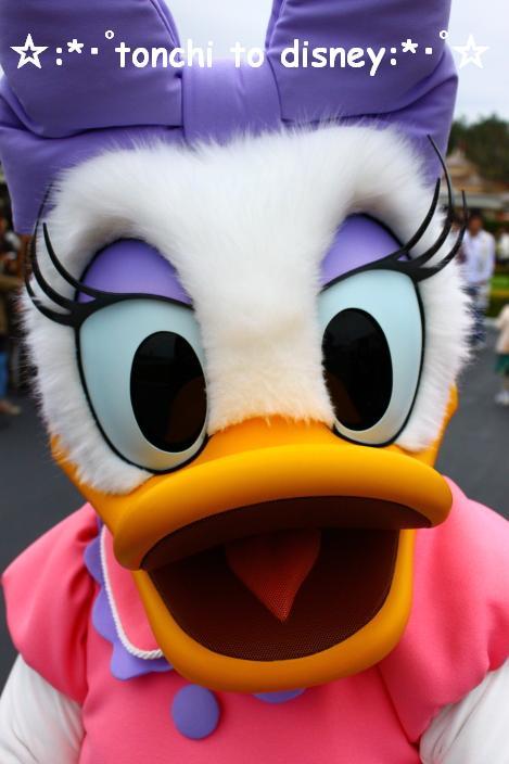 グリ祭り☆デイジー