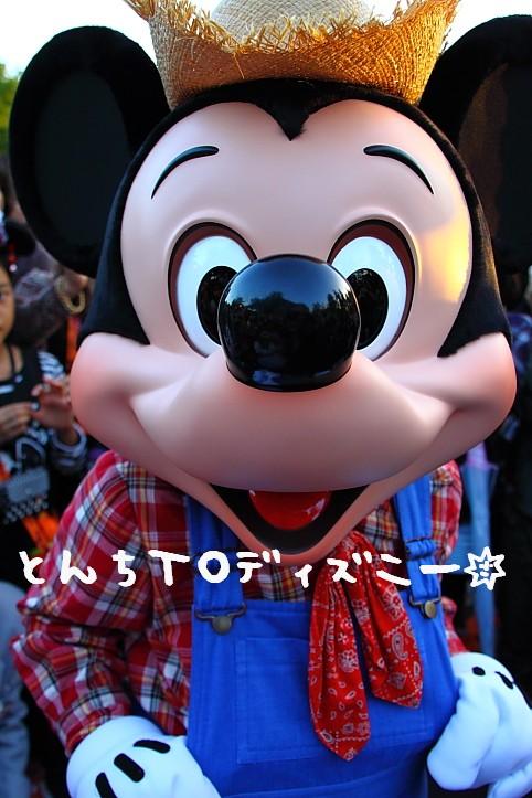 ミッキー☆