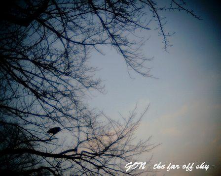 2009-02-21-03.jpg