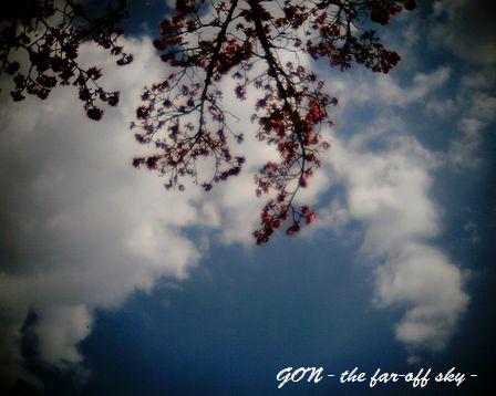 2009-03-12-02.jpg