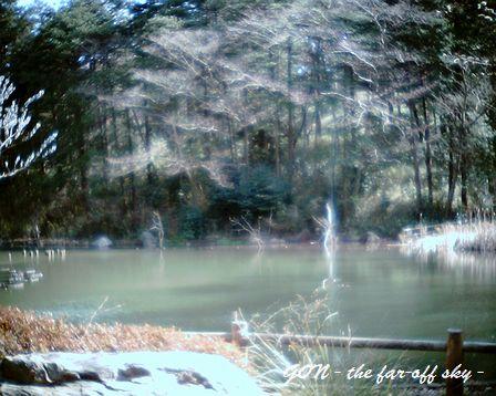 2009-03-16-02.jpg