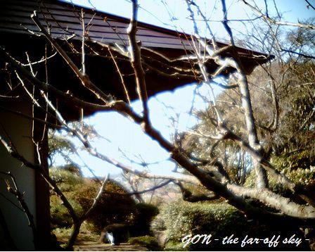 2009-03-18-02jpg.jpg