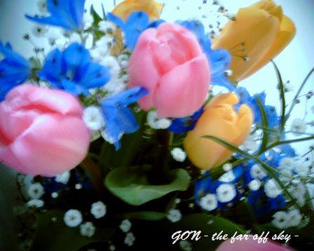 2009-03-19-01.jpg