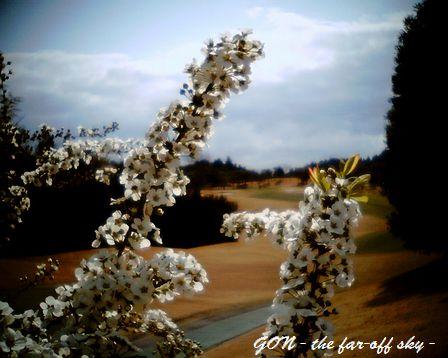 2009-03-22-02.jpg