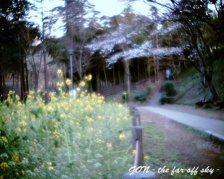 2009-03-30-04.jpg