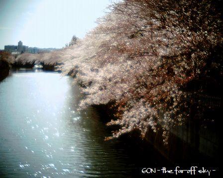 2009-04-04-02.jpg