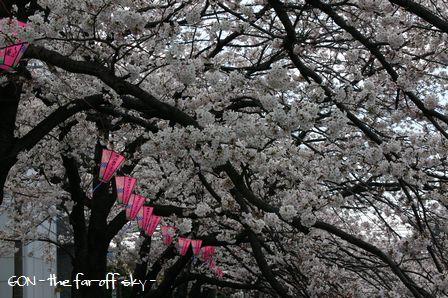 2009-04-04-07.jpg
