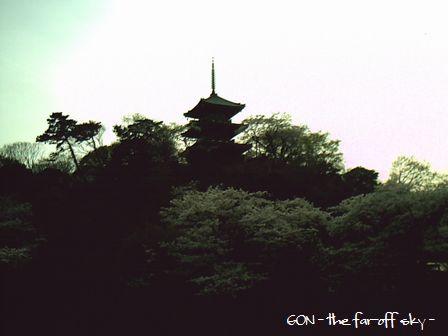 2009-04-06-02.jpg