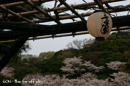 2009-04-06-07.jpg
