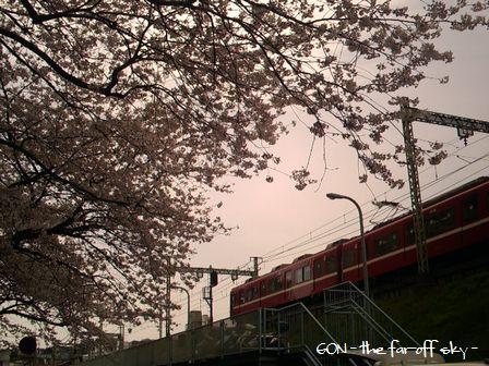 2009-04-11-04.jpg