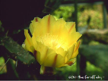 2009-05-22-02.jpg